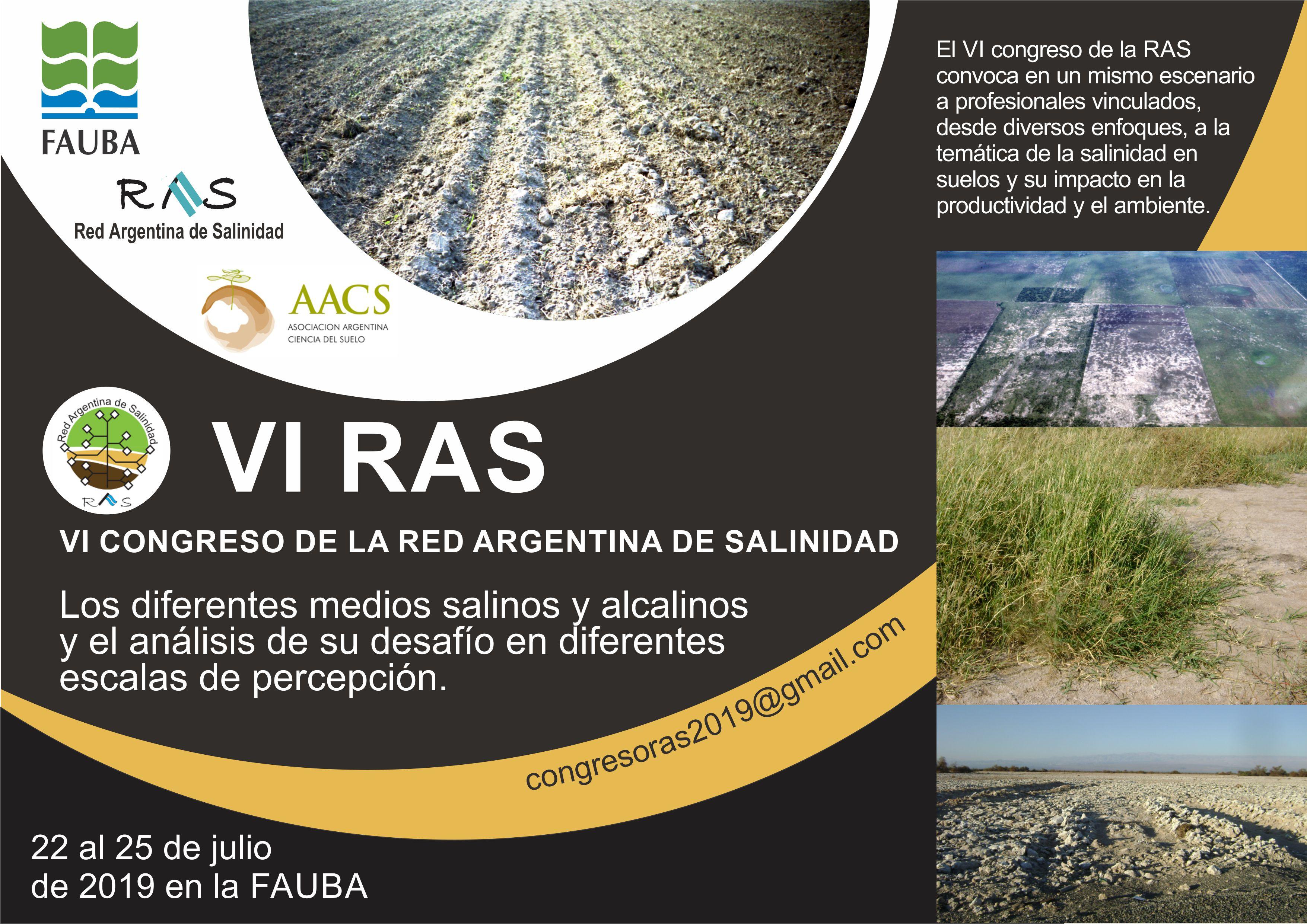 Imagen VI RAS